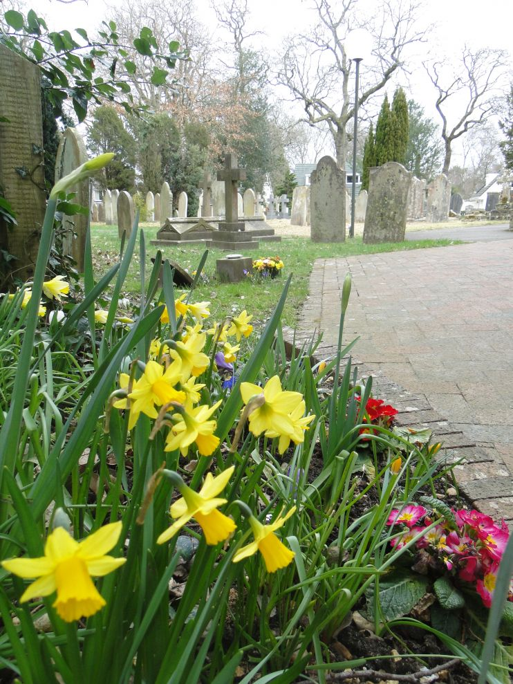 Churchyard photo